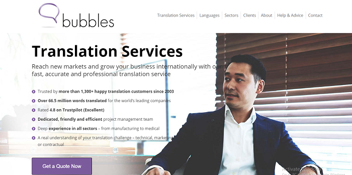 Website Translation Professional Means Hazard Free