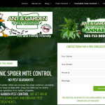 how to kill two spotted spider mites organically